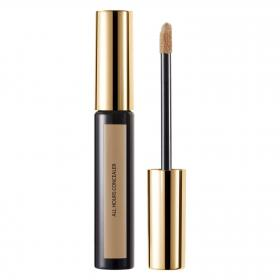 All Hours Concealer Honey 05