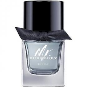 Mr. Burberry Indigo Eau de Toilette 50 ml